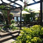 The Beer Garden at The Waggon