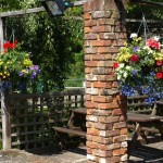 Flowers in the Beer Garden at The Waggon, Graveley